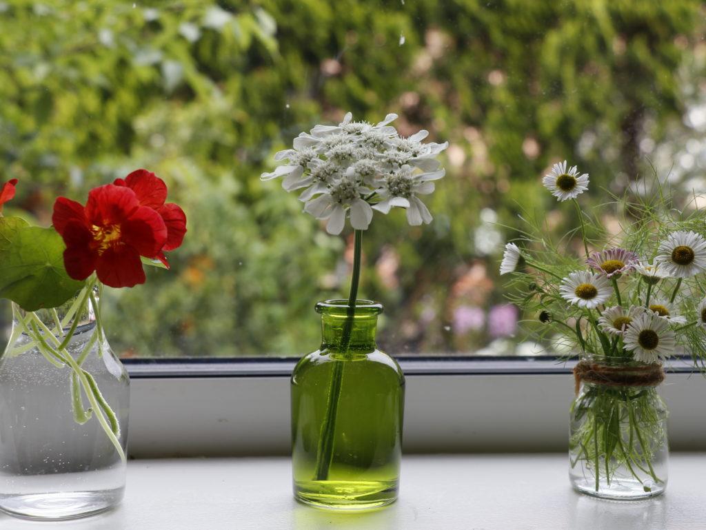 出窓を飾る小瓶ガーデニング