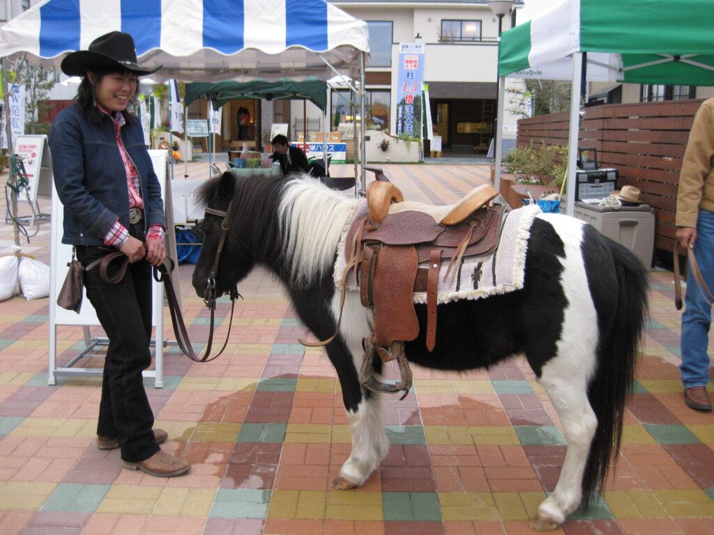 かわいいポニー乗馬体験