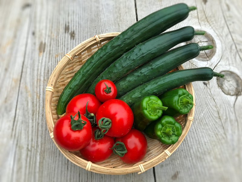 家庭菜園講座&野菜ミニマルシェ
